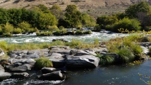 Moody Rapids, Lower Deschutes River. Photo by Brian O'Keefe.