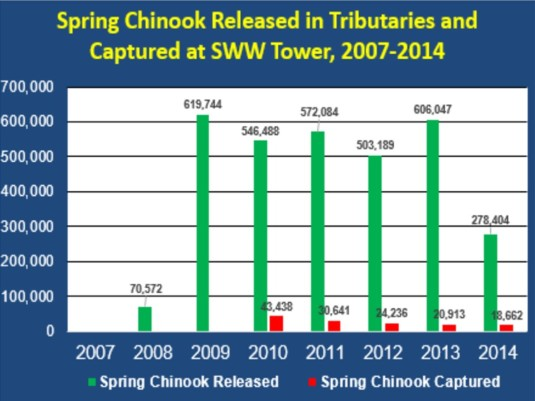 Graph 2. Source: 2007-2014 PGE Annual Fish Passage Reports to Federal Energy Regulatory Commission.